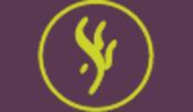 Logo Maison des Algues - Location d'appartement sur l'Ile de Ré